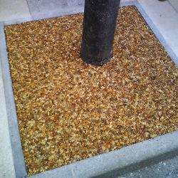 Resin Paving Tree Pit