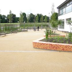 School resin pathways
